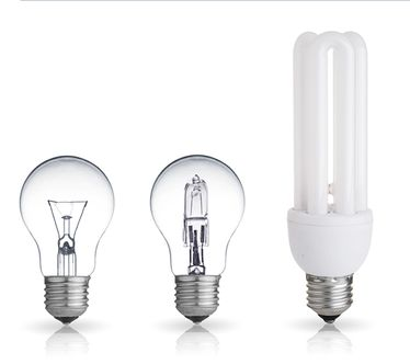 types of bulbs